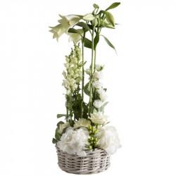 CORSICA FLOWERS COMPOSITION...