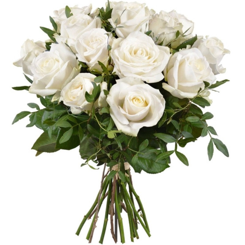 ROSES BLANCHES BOUQUET DOM-EXO