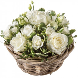 COLOMBE FLOWERS ARRANGEMENT DOM-COM