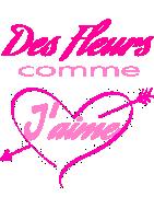COUSSINS DE FLEURS DEUIL